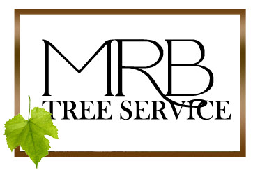 MRB Tree Service - Serving Dayton Ohio and the Miami Valley areas