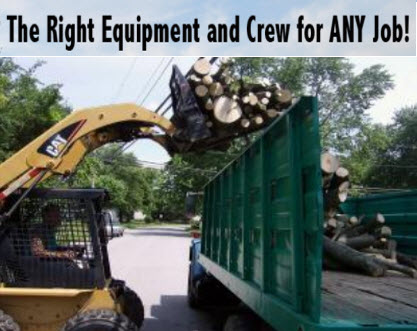 The Right Equipment and Crew for Any Tree Service in Dayton Ohio - MRB Tree Service