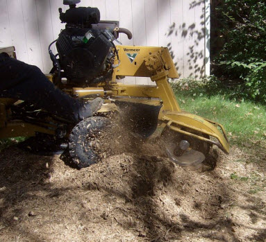 Stump Grinding Service in Dayton Ohio by MRB Tree Service